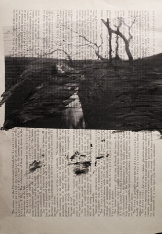 pages print nikki leeyen